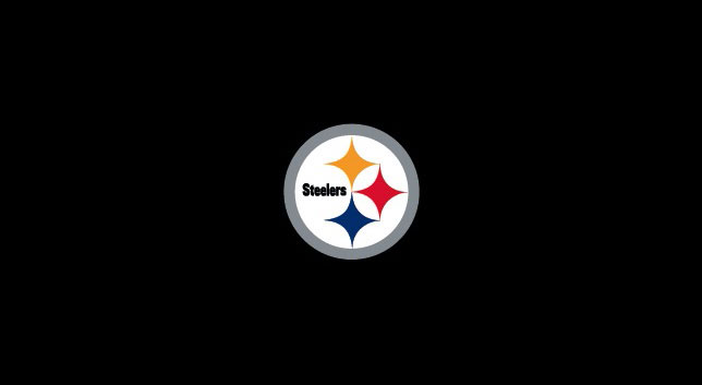 PITTSBURGH STEELERS POOL TABLE FELT