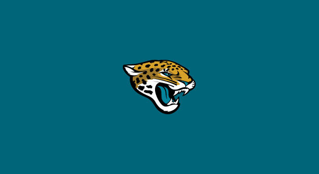 JACKSONVILLE JAGUARS POOL TABLE FELT