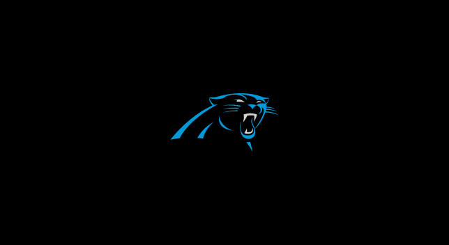 CAROLINA PANTHERS POOL TABLE FELT
