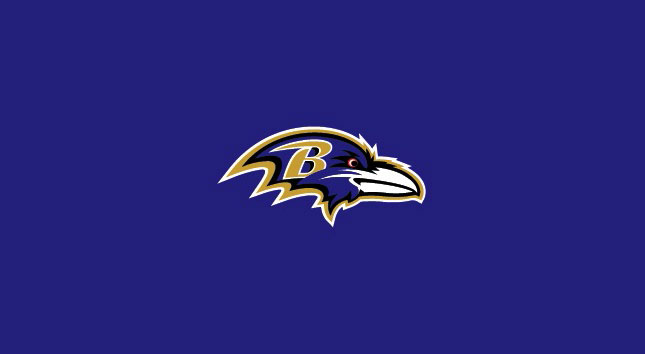 BALTIMORE RAVENS POOL TABLE FELT