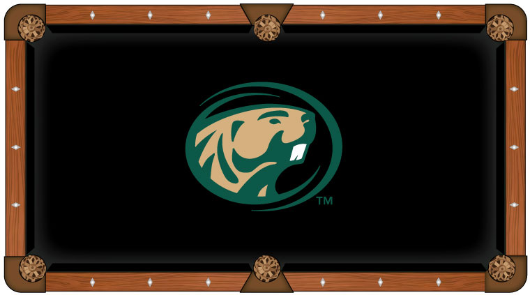Bemidji State University Pool Table Felt
